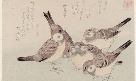 The Tongue-Cut Sparrow – English Podcast – Muhammad Amien Prananto