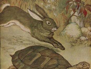 The Tortoise And The Hare – English Podcast – Fariz Hendra Setyawan