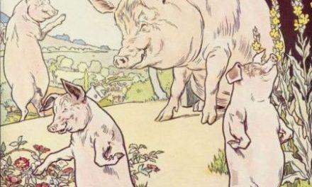 The Three Little Pigs – English Podcast – Ilham Jalu Prakosa