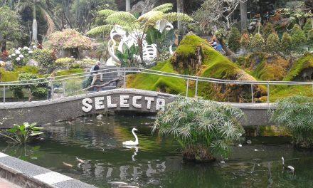 SELECTA : Menikmati Keasrian Alam dan Warna-Warni Taman Bunga