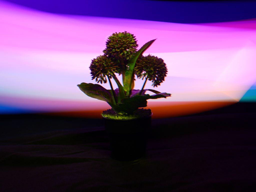 Light Painting memberi efek latar yang lebih berwarna