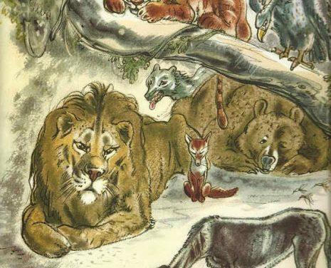 The Animals And The Plague – English Podcast – Wisa Arbi Reaktanoe Ashsidiq