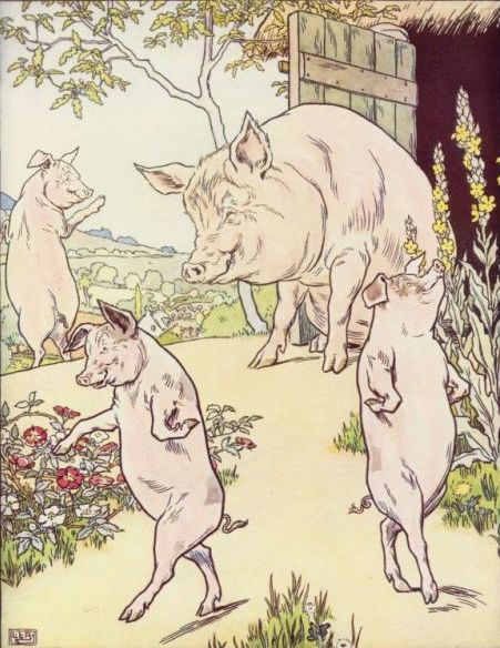 The Three Little Pigs- English Podcast – Shafiyah