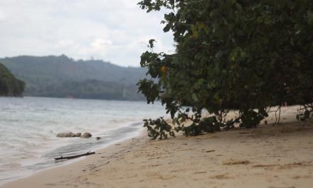 Pantai Waru-Waru Surga Tersembunyi di Pulau Sempu Malang