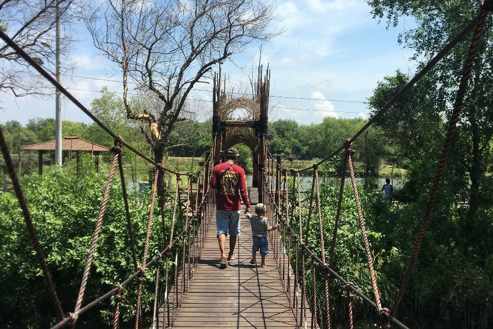 Kebun Raya Mangrove Gunung Anyar, Tempat Wisata buat Kamu yang Doyan Solo Traveling.