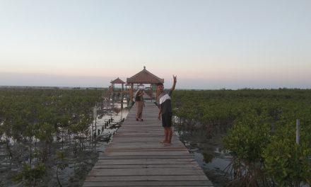 Liburan di Pantai Jembatan Merah Pantai Hutan Mangrove Rembang, Jawa Tengah